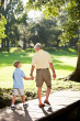 grand parents sitestock-photo-17453286-grandfather-and-grandson-walking-in-park